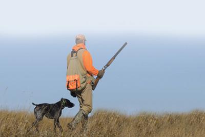 hunter ear plugs